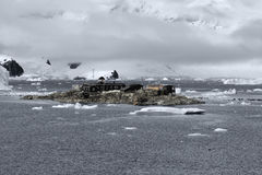 Της Χιλής ανταρκτική ερευνητική βάση Gonzalez Videla Τοποθετημένος στην ανταρκτική χερσόνησο στον κόλπο παραδείσου, Ανταρκτική Στοκ Φωτογραφίες