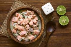 Της Χιλής σολομός Ceviche Στοκ εικόνες με δικαίωμα ελεύθερης χρήσης