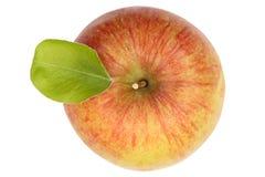 Της Apple φρούτων άποψη που απομονώνεται τοπ στο λευκό Στοκ Εικόνα