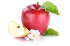 Της Apple φρούτων φέτα που τεμαχίζεται κόκκινη που απομονώνεται στο λευκό Στοκ Φωτογραφία