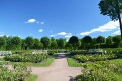 24 της Catherine χλμ κεντρικών οικογενειών προηγούμενος αυτοκρατορικός αριστοκρατίας πάρκων της Πετρούπολης νότος ST selo κατοικι Στοκ εικόνες με δικαίωμα ελεύθερης χρήσης