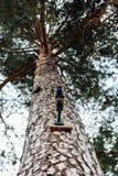 Τηλεοπτικό σύστημα Στοκ φωτογραφίες με δικαίωμα ελεύθερης χρήσης