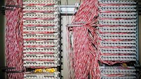 Τηλεφωνικό δίκτυο Στοκ Φωτογραφίες