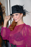 Τιμή της Phoebe στοκ φωτογραφίες με δικαίωμα ελεύθερης χρήσης