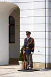 Τιμημένη φρουρά Στοκ Φωτογραφία