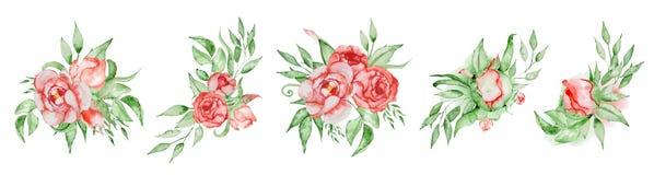Τις ανθοδέσμες Peonies καθορισμένες χρωματισμένο το χέρι συνδυασμό watercolor λουλουδιών και φύλλων Στοκ φωτογραφία με δικαίωμα ελεύθερης χρήσης