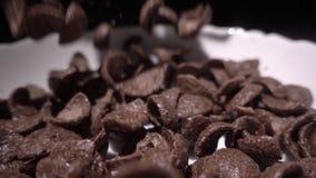 Τις καφετιές νιφάδες καλαμποκιού σοκολάτας εμπίπτουν σε ένα άσπρο πιάτο με ένα σχέδιο των λουλουδιών στην άκρη και γεμίζουν με το φιλμ μικρού μήκους