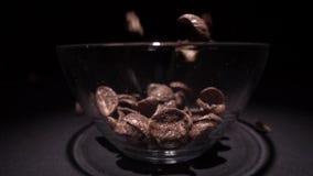 Τις καφετιές νιφάδες καλαμποκιού σοκολάτας εμπίπτουν σε ένα πιάτο με ένα σχέδιο των λουλουδιών στην άκρη και γεμίζουν με το γάλα  απόθεμα βίντεο