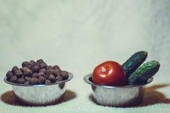 Τι το κατοικίδιο ζώο σας τρώει; στοκ φωτογραφία με δικαίωμα ελεύθερης χρήσης