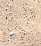 Τμήματα άμμου Στοκ Εικόνες