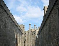 τοίχοι παλατιών Στοκ Εικόνες