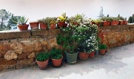 τοίχοι της Τοσκάνης pienza της &I στοκ φωτογραφίες με δικαίωμα ελεύθερης χρήσης