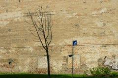 Τοίχος ανακούφισης στοκ εικόνες με δικαίωμα ελεύθερης χρήσης