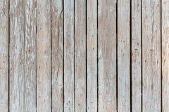 τοίχος ανασκόπησης ξύλιν&omicr Στοκ εικόνες με δικαίωμα ελεύθερης χρήσης