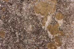 τοίχος ανασκόπησης Στοκ φωτογραφία με δικαίωμα ελεύθερης χρήσης