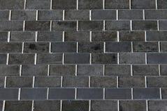 τοίχος αναχωμάτων Στοκ Φωτογραφία