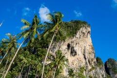Τοίχος απότομων βράχων βράχου ασβεστόλιθων σε Krabi, κόλπος AO Nang, Railei και την παραλία Ταϊλάνδη Tonsai Στοκ Φωτογραφίες