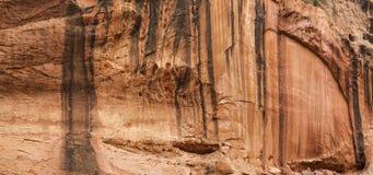 Τοίχος απότομων βράχων στο μακρύ φαράγγι στο ίχνος σαλιασμάτων Στοκ Εικόνα