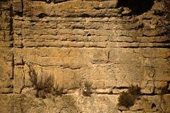 Τοίχος απότομων βράχων Στοκ Φωτογραφίες