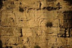 Τοίχος απότομων βράχων Στοκ Εικόνα