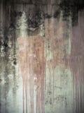 τοίχος ασβεστοκονιάμα&tau Στοκ Φωτογραφίες