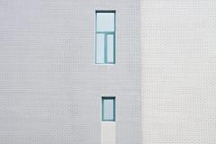 τοίχος κεραμιδιών ανασκό&p Στοκ φωτογραφίες με δικαίωμα ελεύθερης χρήσης