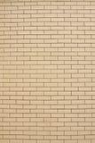 τοίχος κεραμιδιών ανασκό&p Στοκ Εικόνα