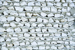 τοίχος κοραλλιών Στοκ Εικόνα