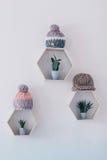 Τοίχος με τα hexagon ράφια και τα πλεκτά καπέλα Στοκ Φωτογραφίες