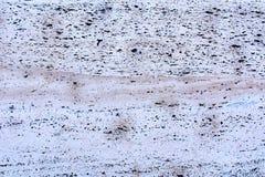 Τοίχος με τη διακοσμητική επένδυση - τραβερτίνης 1 Στοκ Εικόνες