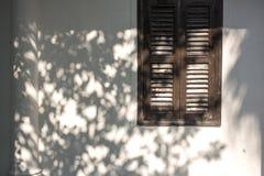 Τοίχος με τη σκιά Στοκ Εικόνες
