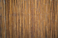 Τοίχος μπαμπού ή σύσταση φρακτών μπαμπού Στοκ Εικόνες