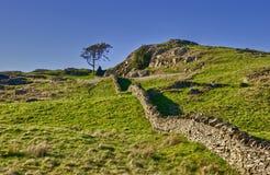 τοίχος ξηρών πετρών επαρχία&sigm στοκ εικόνες με δικαίωμα ελεύθερης χρήσης