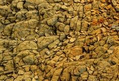 Τοίχος πετρών σχεδίων Στοκ Φωτογραφία