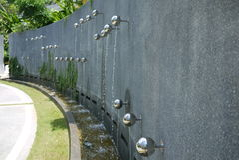 τοίχος πηγών Στοκ φωτογραφία με δικαίωμα ελεύθερης χρήσης