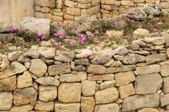 Τοίχος που γίνεται από τον ψαμμίτη, Μάλτα Στοκ Εικόνες