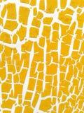 Τοίχος ρωγμών Στοκ φωτογραφία με δικαίωμα ελεύθερης χρήσης