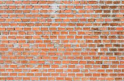 τοίχος σύστασης τούβλο&upsil Στοκ Εικόνα