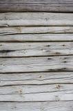 τοίχος σύστασης Στοκ φωτογραφίες με δικαίωμα ελεύθερης χρήσης