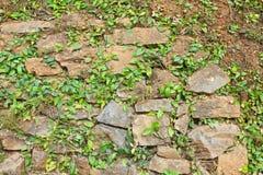 Τοίχος της πέτρας Στοκ φωτογραφία με δικαίωμα ελεύθερης χρήσης