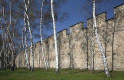 τοίχος της Πράγας petrin πείνας Στοκ φωτογραφία με δικαίωμα ελεύθερης χρήσης