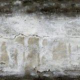 Τοίχος της συγκεκριμένης, άνευ ραφής σύστασης Στοκ Εικόνες