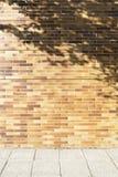 Τοίχος τούβλων με τη σκιά δέντρων και το γκρίζο πεζοδρόμιο Στοκ Εικόνα