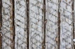 Τοίχος των κούτσουρων Στοκ εικόνα με δικαίωμα ελεύθερης χρήσης