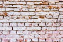 Τοίχος των κόκκινων τούβλων Στοκ εικόνες με δικαίωμα ελεύθερης χρήσης