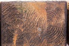 Τοίχος των σκοτεινών ξύλινων σανίδων Στοκ Εικόνα