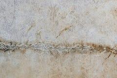 Τοίχος φορμών και ρωγμών Στοκ Εικόνα
