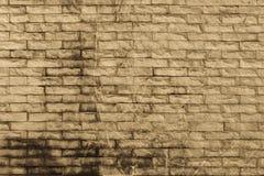 τοίχος ψαμμίτη Στοκ φωτογραφία με δικαίωμα ελεύθερης χρήσης