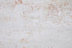 τοίχος Στοκ Εικόνες