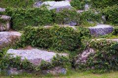 Τοίχος Stone Στοκ Εικόνες